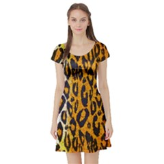 Animal Print Abstract  Short Sleeve Skater Dresses by OCDesignss