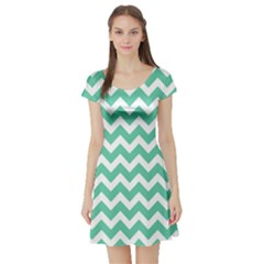 Chevron Pattern Gifts Short Sleeve Skater Dresses