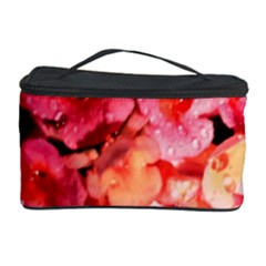 Dsc 0117666565 Cosmetic Storage Cases by timelessartoncanvas