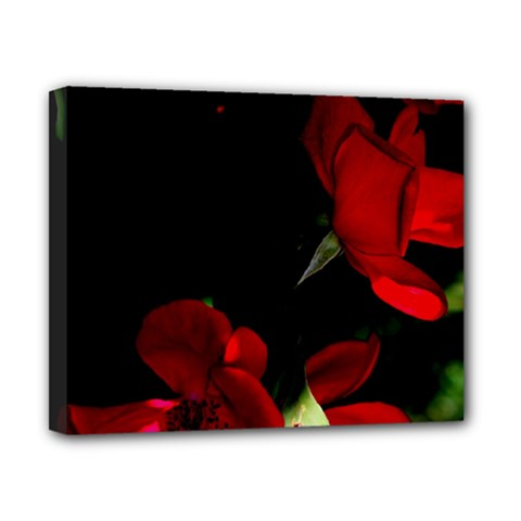 Roses 1 Canvas 10  X 8  by timelessartoncanvas