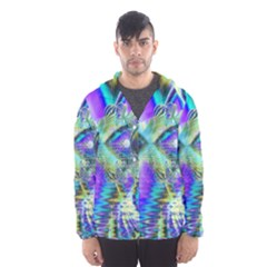 Abstract Peacock Celebration, Golden Violet Teal Hooded Wind Breaker (men) by DianeClancy