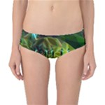 Dawn Of Time, Abstract Lime & Gold Emerge Classic Bikini Bottoms