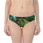 Dawn Of Time, Abstract Lime & Gold Emerge Hipster Bikini Bottoms
