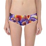 Winter Crystal Palace, Abstract Cosmic Dream (lake 12 15 13) 9900x7400 Smaller Classic Bikini Bottoms