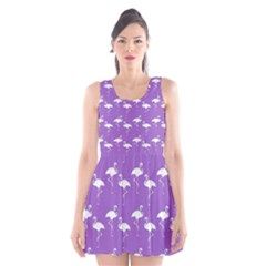 Flamingos Pattern White Purple Scoop Neck Skater Dress by CrypticFragmentsColors