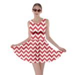 Poppy Red & White Zigzag Pattern Skater Dress