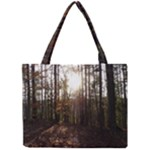 Forest - Pa Grand Canyon ~Leo Harris St Park by Ave Hurley - Mini Tote Bag