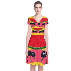Ants And Watermelon  Short Sleeve Front Wrap Dress by Valentinaart