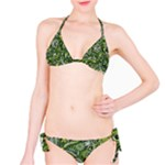 Green Boho Flower Pattern Zz0105  Bikini Set