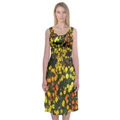Marigolds Midi Sleeveless Dress