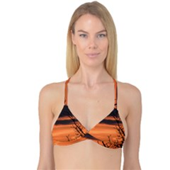 Tree Branches And Sunset Reversible Tri Bikini Top by picsaspassion