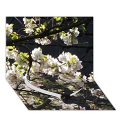 Blooming Japanese Cherry Flowers Heart Bottom 3d Greeting Card (7x5) by picsaspassion