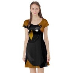 Halloween   Old Black Rawen Short Sleeve Skater Dress by Valentinaart