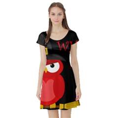 Who Is A Witch?   Red Short Sleeve Skater Dress by Valentinaart
