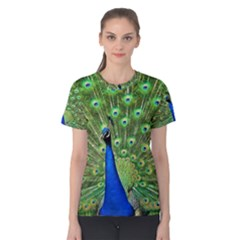 Bird Peacock Women s Cotton Tee by AnjaniArt
