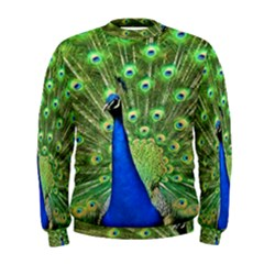 Bird Peacock Men s Sweatshirt
