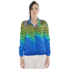 Blue Peacock Feathers Wind Breaker (women) by AnjaniArt