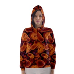 Chemical Biology Bacteria Bacterium Hooded Wind Breaker (women)
