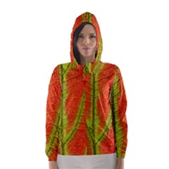 Unique Leaf Hooded Wind Breaker (women)