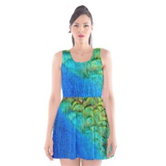 Blue Peacock Feathers Scoop Neck Skater Dress