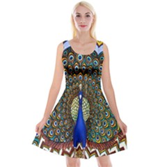 The Peacock Pattern Reversible Velvet Sleeveless Dress by Nexatart