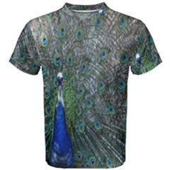 Peacock Four Spot Feather Bird Men s Cotton Tee by Nexatart