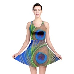 Blue Peacock Feather Reversible Skater Dress by Amaryn4rt
