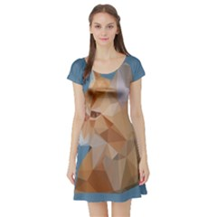 Animals Face Cat Short Sleeve Skater Dress