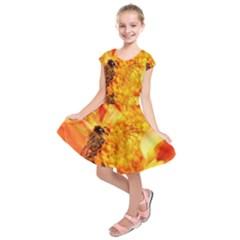 Honey Bee Takes Nectar Kids  Short Sleeve Dress