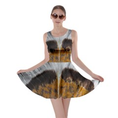 Spring Bird Feather Turkey Feather Skater Dress by Nexatart