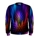 Bird Feathers Rainbow Color Pink Purple Blue Orange Gold Men s Sweatshirt View1