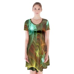 Art Shell Spirals Texture Short Sleeve V Neck Flare Dress by Simbadda