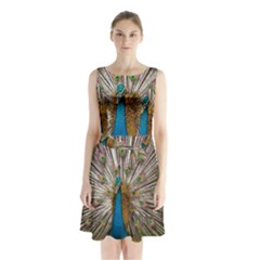 Indian Peacock Plumage Sleeveless Chiffon Waist Tie Dress by Simbadda