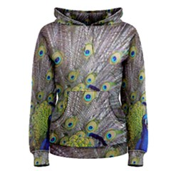 Peacock Bird Feathers Women s Pullover Hoodie by Simbadda