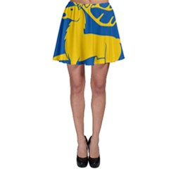 Coat Of Arms Of Aland Skater Skirt by abbeyz71