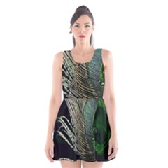 Feather Peacock Drops Green Scoop Neck Skater Dress by Simbadda