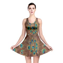 Peacock Pattern Background Reversible Skater Dress by Simbadda