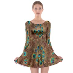 Peacock Pattern Background Long Sleeve Skater Dress by Simbadda