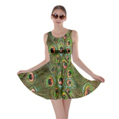 Peacock Feathers Green Background Skater Dress by Simbadda