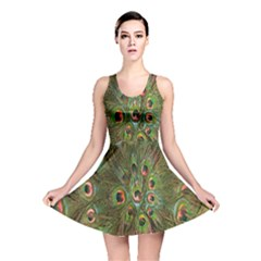 Peacock Feathers Green Background Reversible Skater Dress by Simbadda