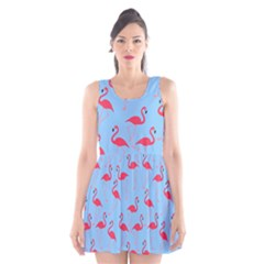 Flamingo Pattern Scoop Neck Skater Dress by Valentinaart
