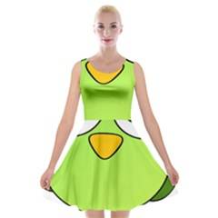 Bird Big Eyes Green Velvet Skater Dress by Alisyart
