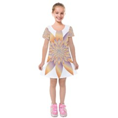 Chromatic Flower Gold Star Floral Kids  Short Sleeve Velvet Dress by Alisyart