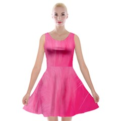 Very Pink Feather Velvet Skater Dress by Simbadda