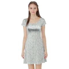 Gray Lace Pattern With Flowers On Blue Short Sleeve Skater Dress