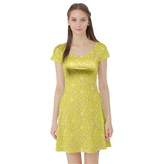 Green Lemon Slice Short Sleeve Skater Dress by CoolDesigns