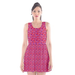 Red White And Blue Leopard Print  Scoop Neck Skater Dress by PhotoNOLA