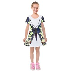 A Colorful Butterfly Image Kids  Short Sleeve Velvet Dress by Simbadda