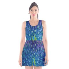 Amazing Peacock Scoop Neck Skater Dress by Simbadda