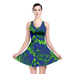 Abstract Green And Blue Background Reversible Skater Dress by Nexatart